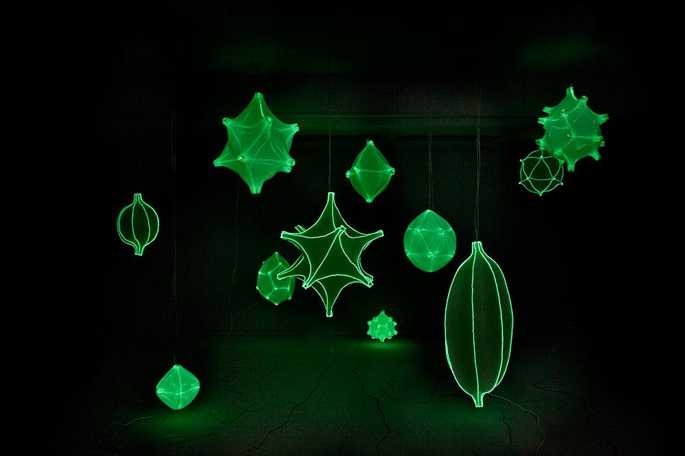 Radiolaria, מאירות בחושך. צילום: Rogier Chang