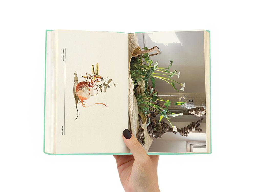 מתוך Cell Culture Club, ספר האמן של הילה עמרם וניבי אלרואי