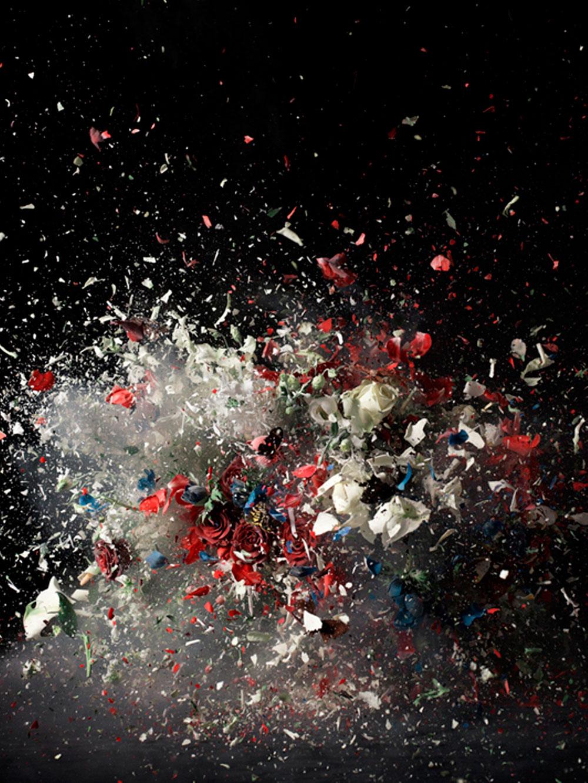 פרחים מתפוצצים 01-2008