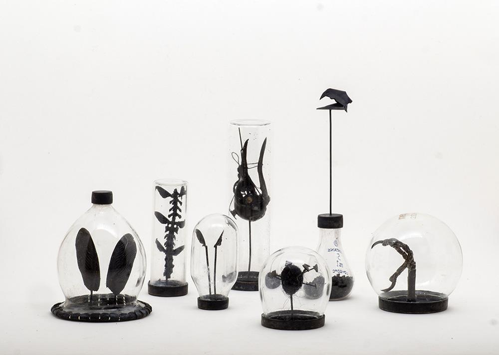 אין תוכו כברו, נגה הראל, אובייקטים קטנים בתוך תיבות תצוגה שקופות