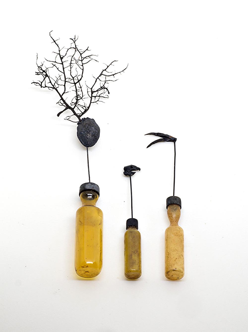 אין תוכו כברו, נגה הראל, פרט (בקבוקוני זכוכית שמהפקק שלהם צומחים אלמנטים שונים ביניהם שורשים מסועפים)