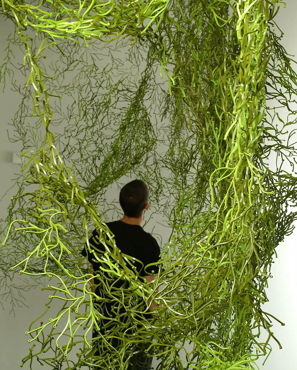 אצות, 2004, ויטרה. מערכת המאפשרת למשתמש להתקין מחיצות במערכי צפיפות משתנים, ויחידותיה מִתְרבות באופן כמו-אורגני, ליצירת אדריכלות בדרגה מילימטרית