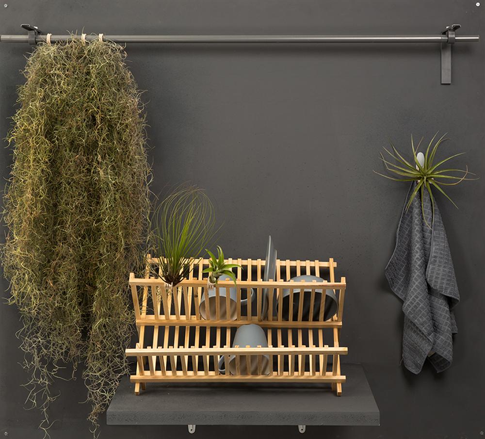 Clip On Plant, התופסנים שמאפשרים לעגן את צמחי האוויר לכל מקום שנבחר