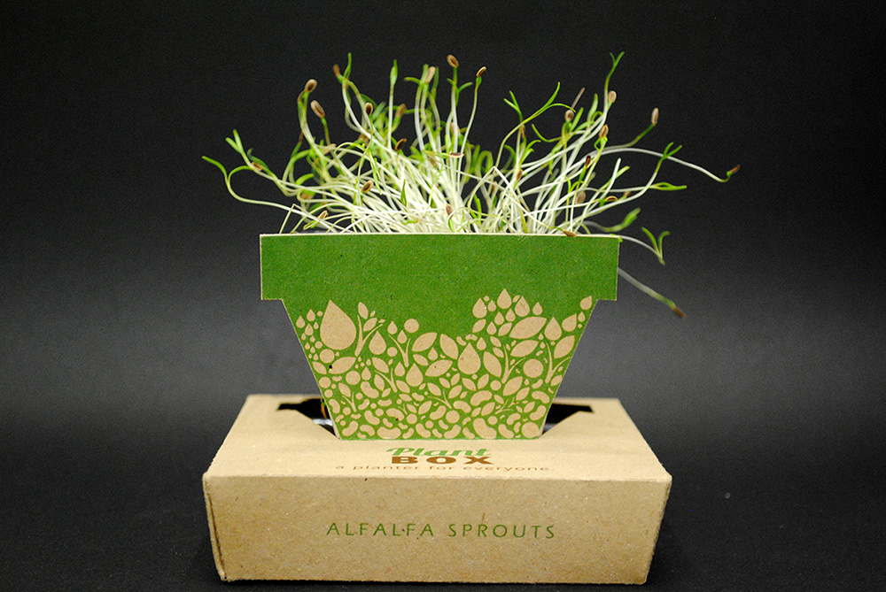 Plant Box, אדנים הזרעים הקטנה שעיצבה היא זיבק