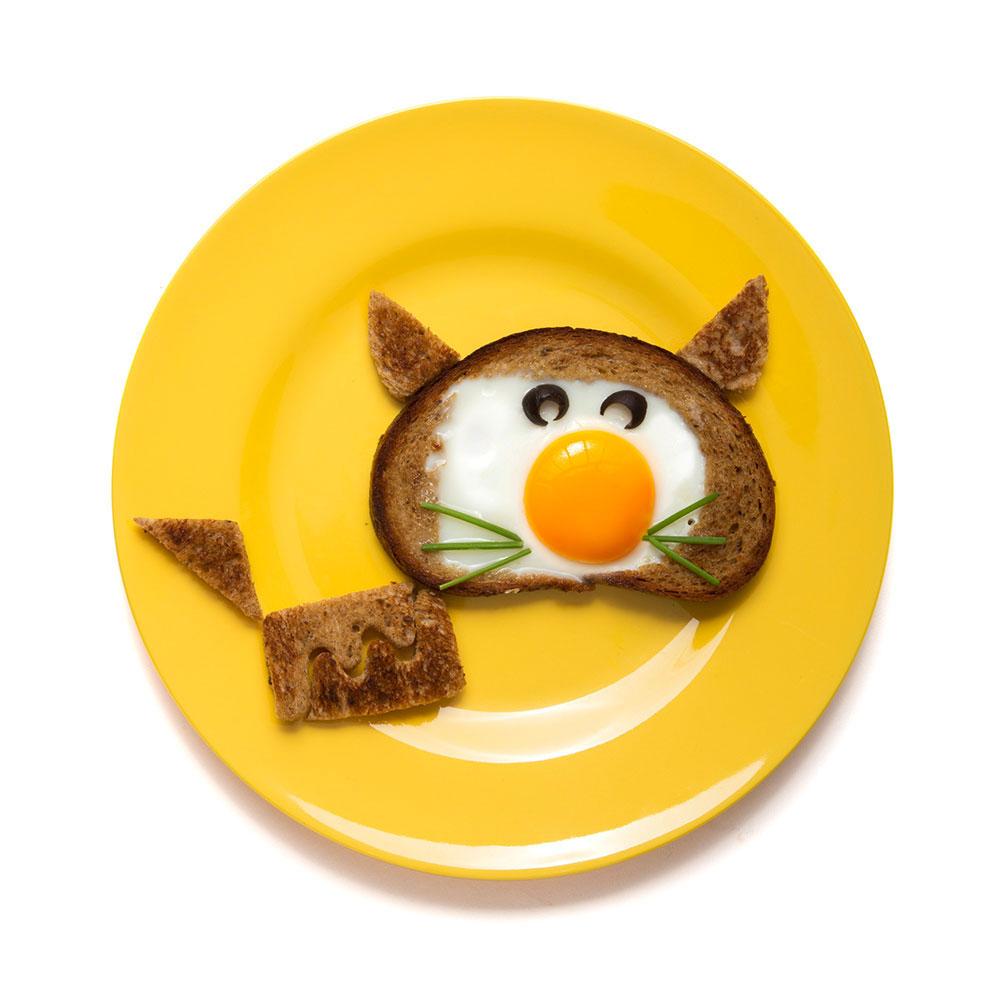 ביצה בקן בצורת חתול