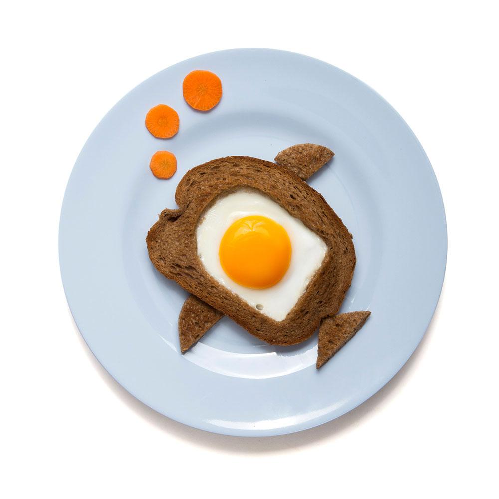 ביצה בקן בצורת דג