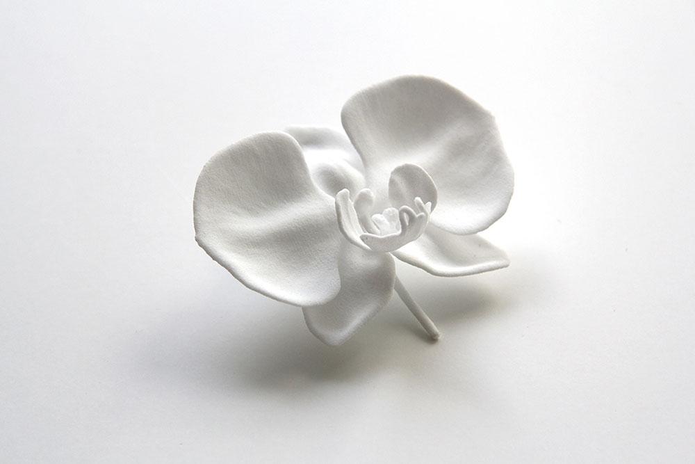"""הפריחה המלאה. אחד הסחלבים שעיצב Mario Minale ל-CHP. הבוטיק של טסה"""" מציע עבודות עיצוב נבחרות שבלוקלנד אוצרת בפינצטה"""