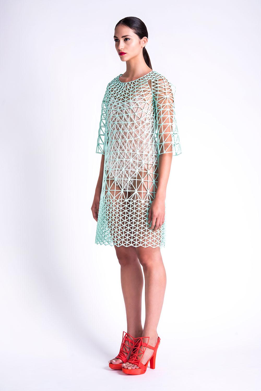 דנית פלג. השמלה הירקרקה