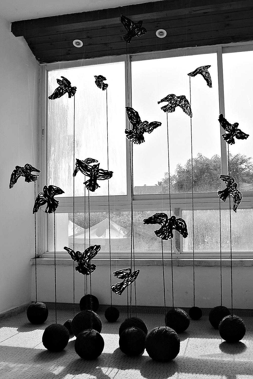 מאיה גלפמן, ציפורים שחורות, 2016