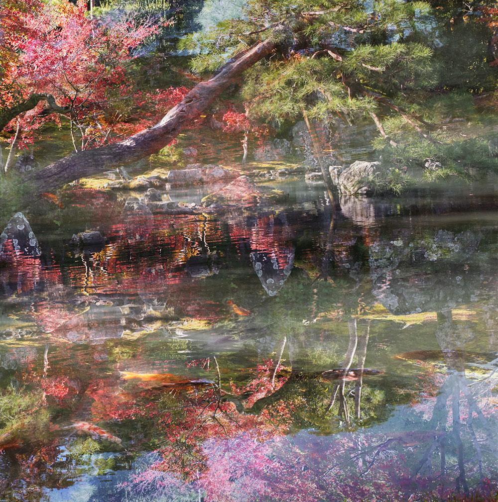 אורי גרשט, floating world, השתקפות הצמחיה באגם