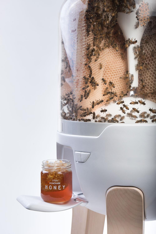 רדיית דבש בלחיצת כפתור