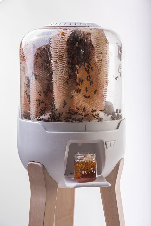 הכוורת מתוכננת לספק חצי קילו דבש לחודש (בצילום עם צנצנת דבש בגומחה הייעודית)