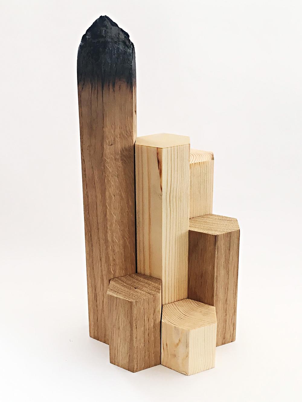 העיפרון של מאיה בן-דוד ואורי בן-צבי (משושי עץ שלאחד מהם חוד שרוף)
