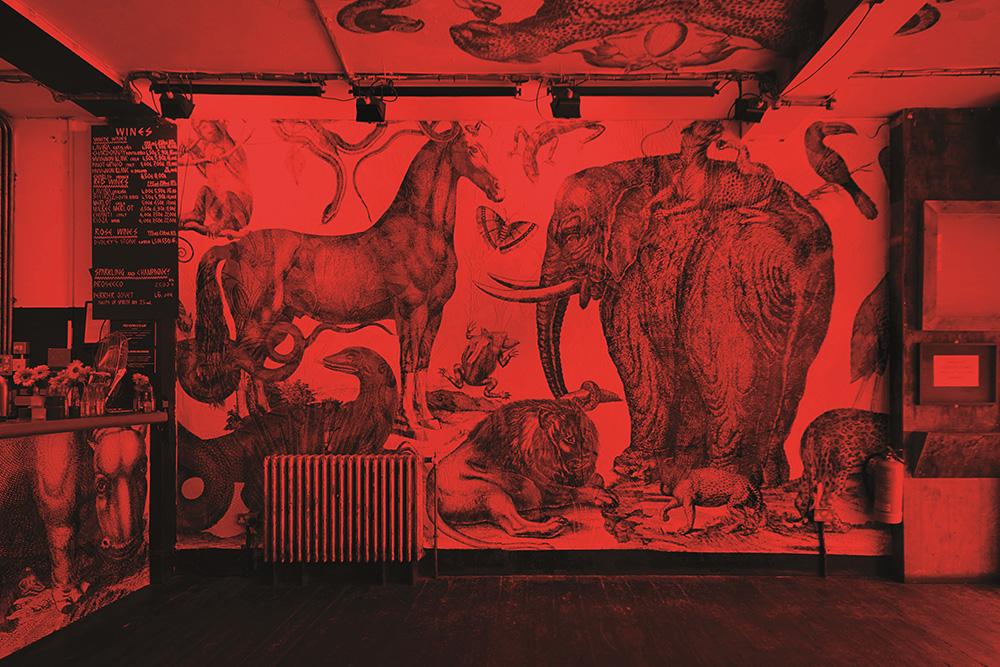 Wallpaper, מיצב מסדרת RGB של סטודיו קרנובסקי. צילום: ג'ף מטאל