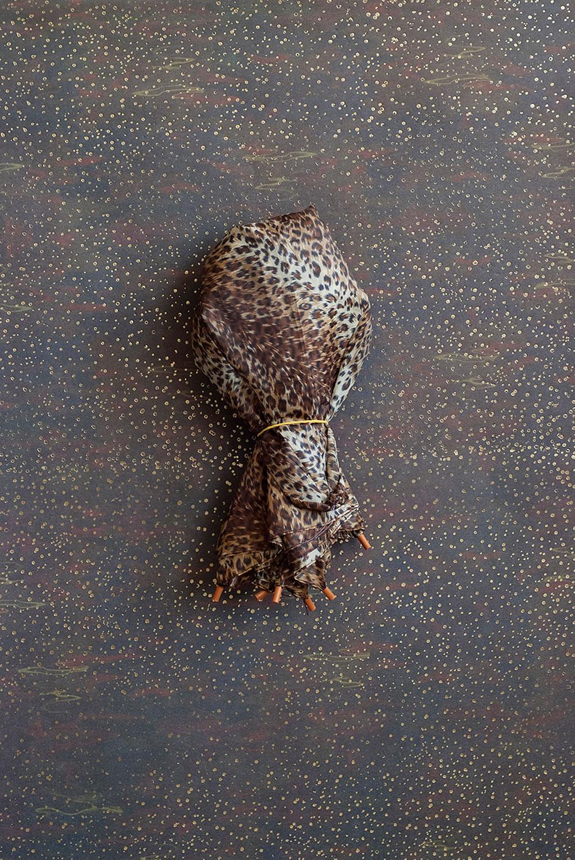 מטרייה, גוסטבו סגורסקי, מתוך Apparitions